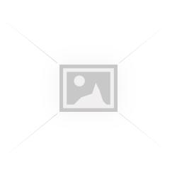 Geanta Celine Ciclam piele naturala